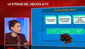 Sara Farnetti a Tg2 Insieme - Cioccolato